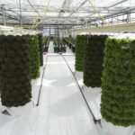Vertical Modular Growing Component