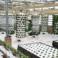multi-base-soilless-greenhouse