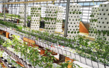Aponix at Urban Gardening Event in Research Facility